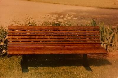 The Bench: A Buckeye Love Story
